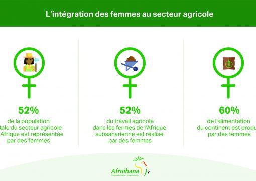 L'INTÉGRATION DES FEMMES AU SECTEUR AGRICOLE