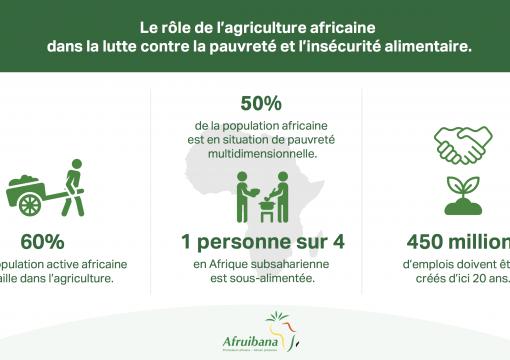 LE RÔLE DE L'AGRICULTURE AFRICAINE DANS LA LUTTE CONTRE LA PAUVRETÉ ET L'INSÉCURITÉ ALIMENTAIRE