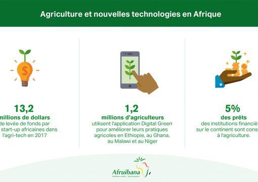 Les agro-startups : une autre facette de la révolution entrepreneuriale africaine